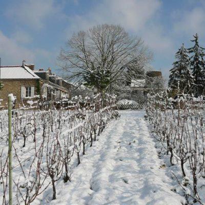 bablut3-sous-la-neige